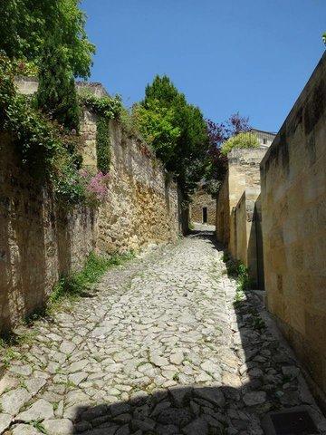 Bleu Raisin, bed&breakfast Saint-Emilion