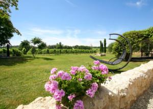 Tuin in de wijngaarden