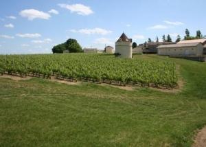 Un des châteaux viticoles aux Salles de Castillon