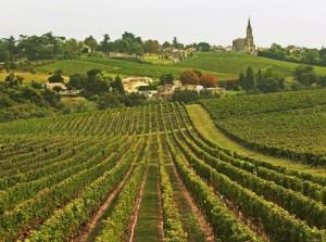 Bordeaux_nouvelleroutedesvins