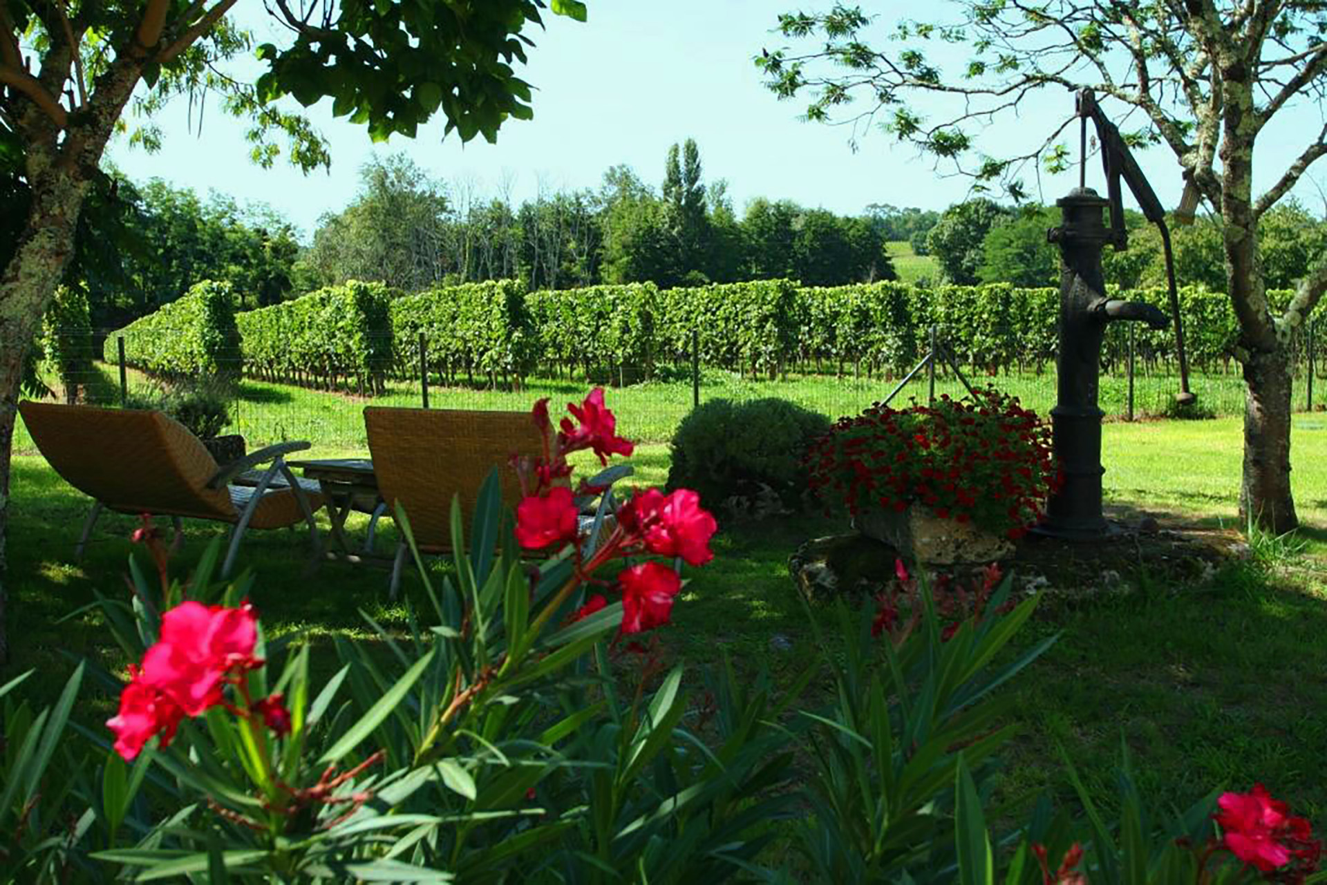 Bed and breakfast Saint-Emilion