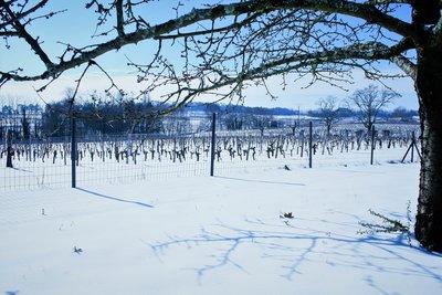 Winter_shortbreak_Bordeaux