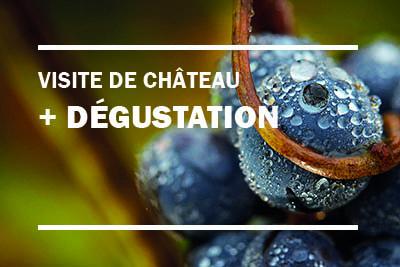 Dégustation_vin_Saint-Emilion
