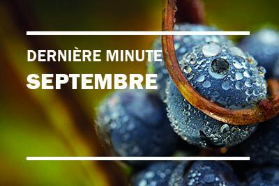 Offre dernière minute Gironde